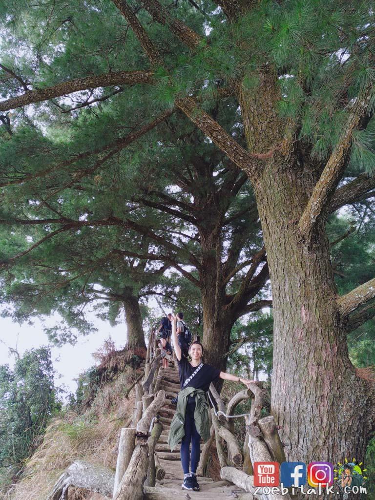 dakeng trails 14