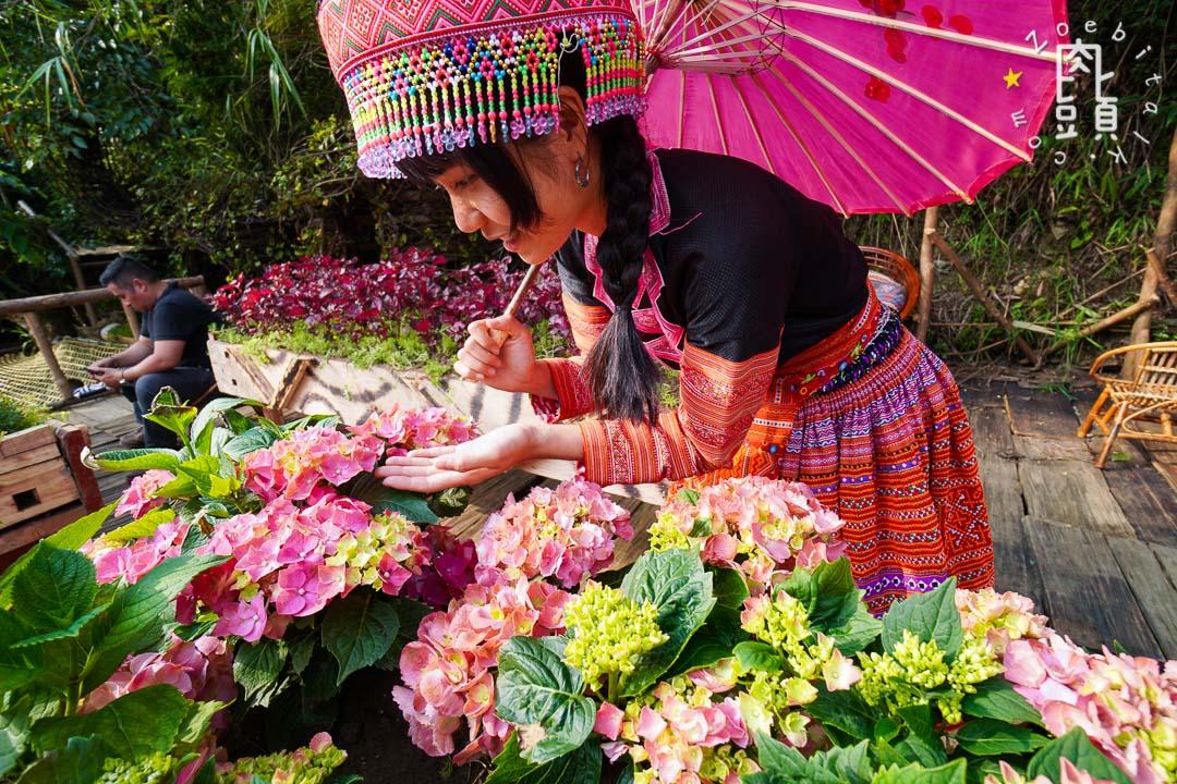 vietnam sapa 11