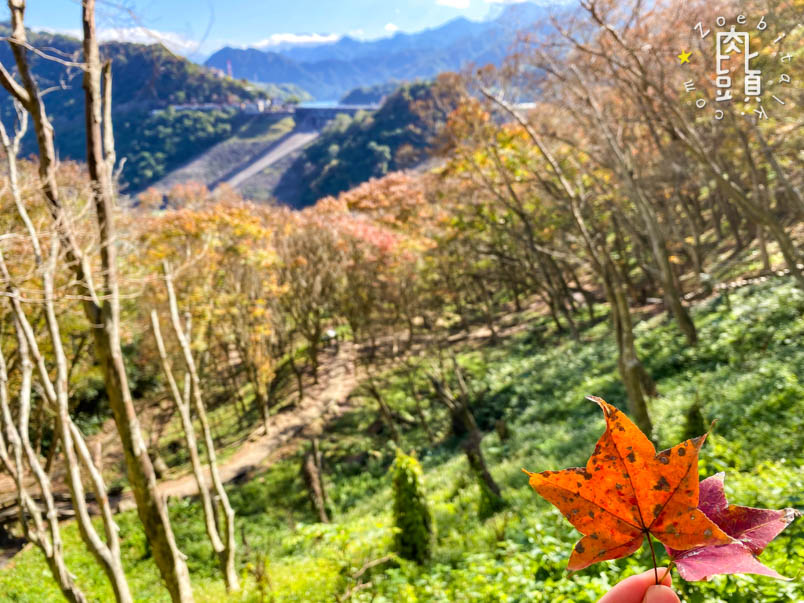 shihmen reservoir maple trails 8