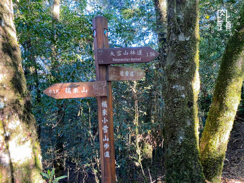 yuanzui shao lai trail 46