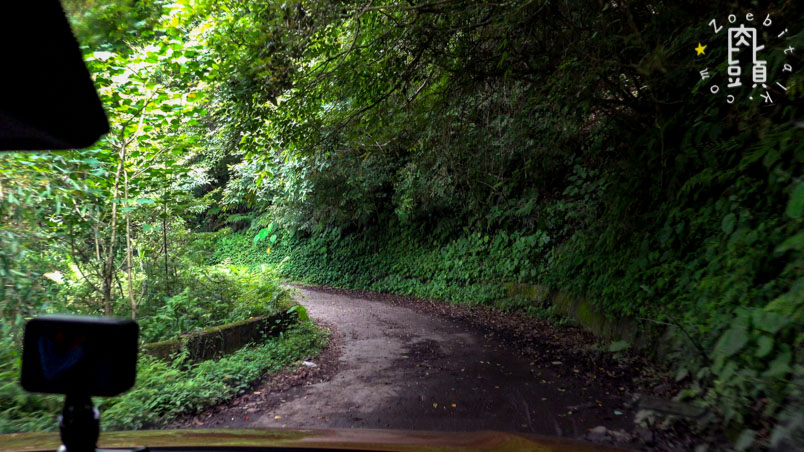 luoshan forest road 5