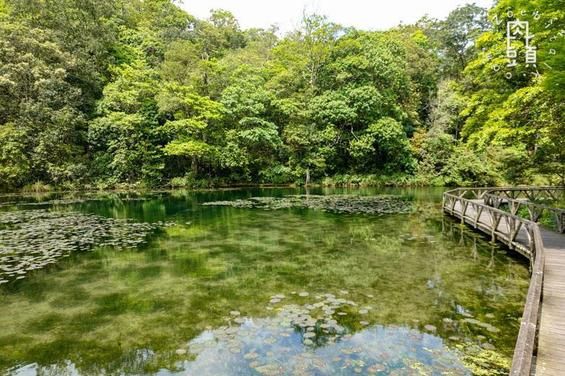 yilan fushan botanical garden 10