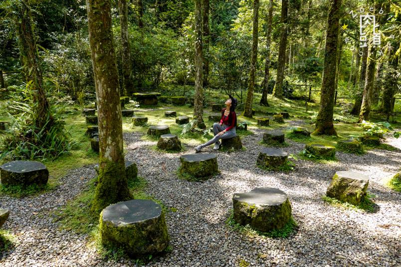 yilan fushan botanical garden 13
