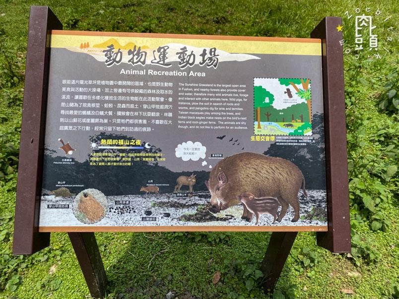 yilan fushan botanical garden 15