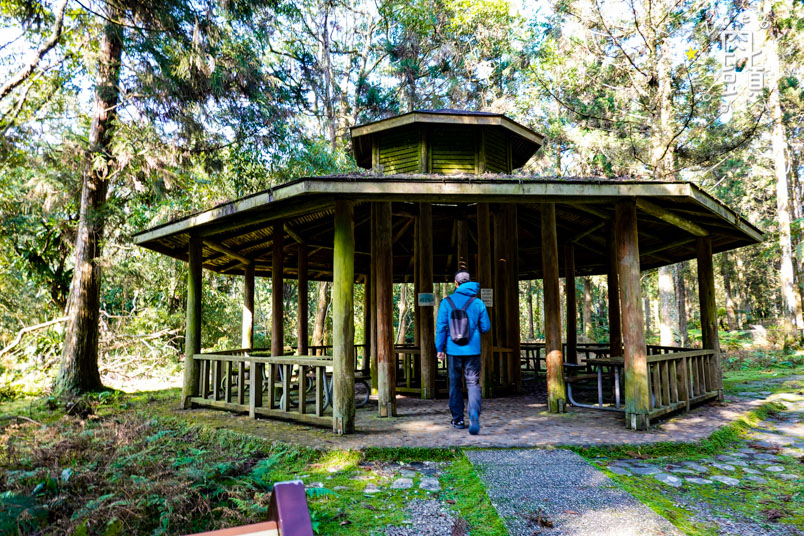 yilan fushan botanical garden 3