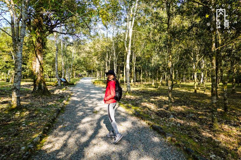 yilan fushan botanical garden 4