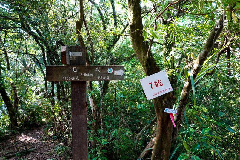 new taipei bijia mountain 21