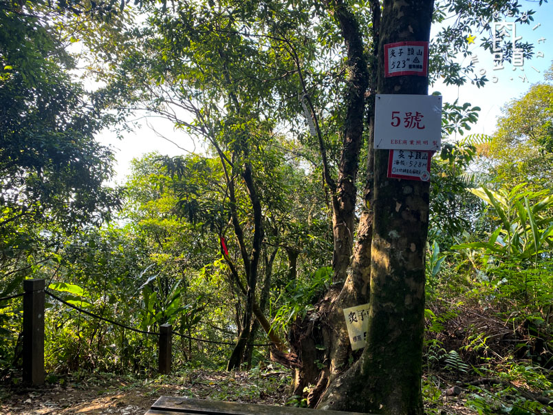 new taipei bijia mountain 22