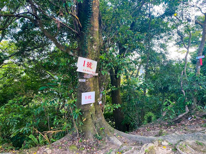 new taipei bijia mountain 24