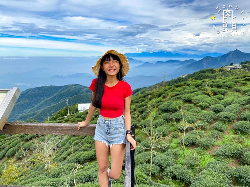 nantou gingko forest 23