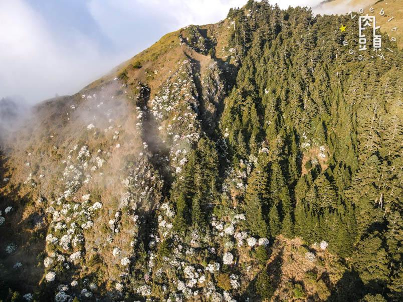 nantou xiaoqilai trail 2