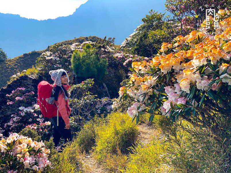 nantou xiaoqilai trail 22