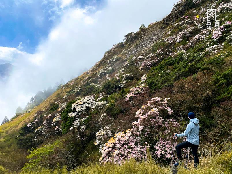 nantou xiaoqilai trail 24